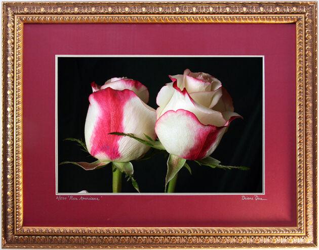 IMG_0436-Rosa-Crimson-Twins-New-York-City