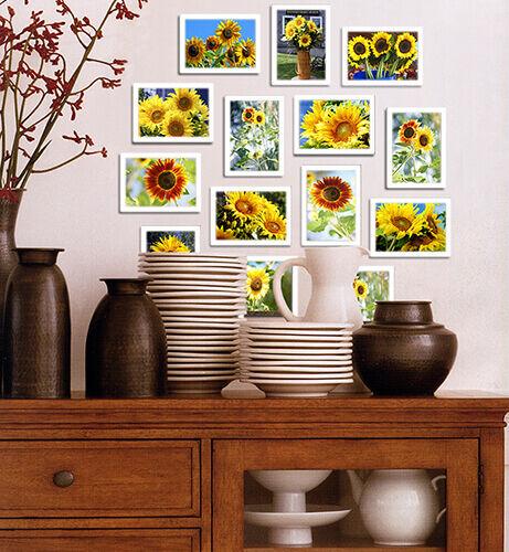 Room-Mini Sunflower Kitchen Walls