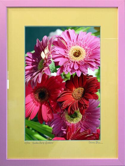 Gerber Daisy Goddess in Pink, Green & Yellow